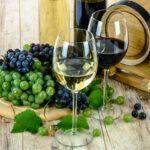 Vinhood Academy, vino e alcolici, dop e igp, export del vino, buchette del vino, vino, dazi usa, vino italiano, coldiretti