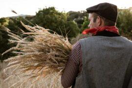 Festa del grano, fiasconaro, pane artigianale