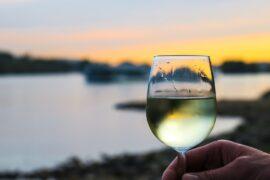 vermentino, enoturismo, verdicchio, vino, degustazione, linguaggio