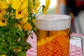 giornata nazionale della birra artigianale