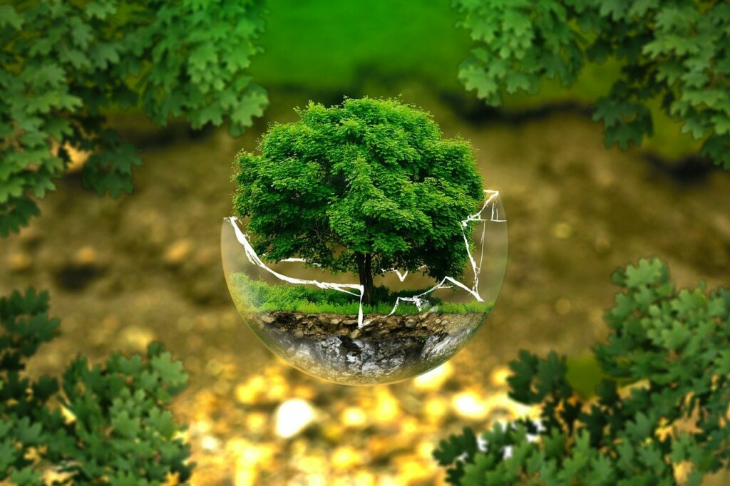 biologico, green